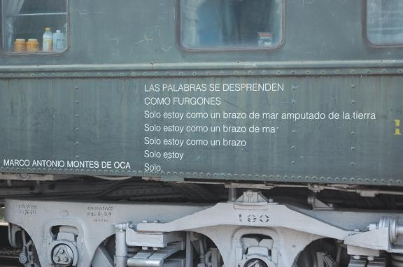 dsc_1050